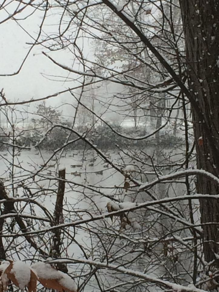 first_run_in_snow